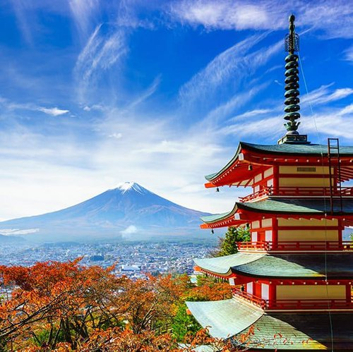 Study Abroad to Japan